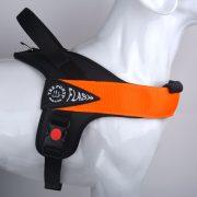 FLASH-T1020_Arancione
