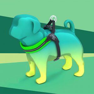 Piccola-Taglia-Easy-fit-rete-fluo-sottopancia-regolabile-RR200-verde-web