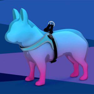 Piccola-Taglia-Easy-fit-sottopancia-regolabile-R250-azzurro-rifrangente-fibbia-web